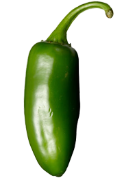 Jalapeno - chili peppers