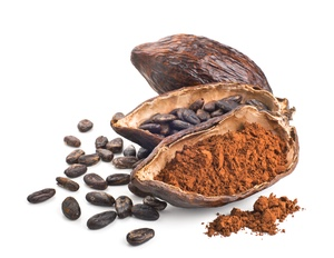 Cocoa pod, beans and powder isolated on a white background